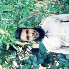 Md Jahangir Hossain